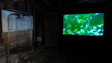 caged-bird-v2